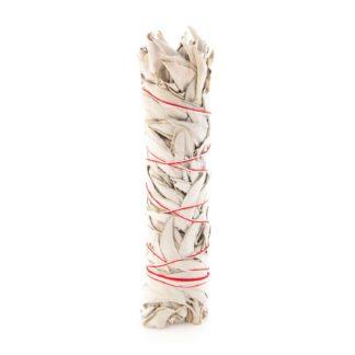 Weisser Salbei Stick